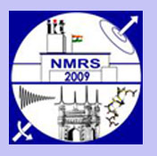 CLICK here to display the webpage for NMRS2008 participation